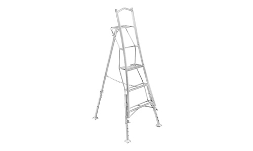 Ladders Cover
